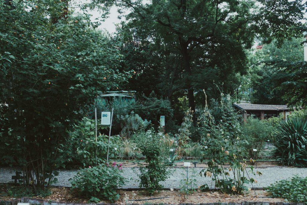 brera botnical garden